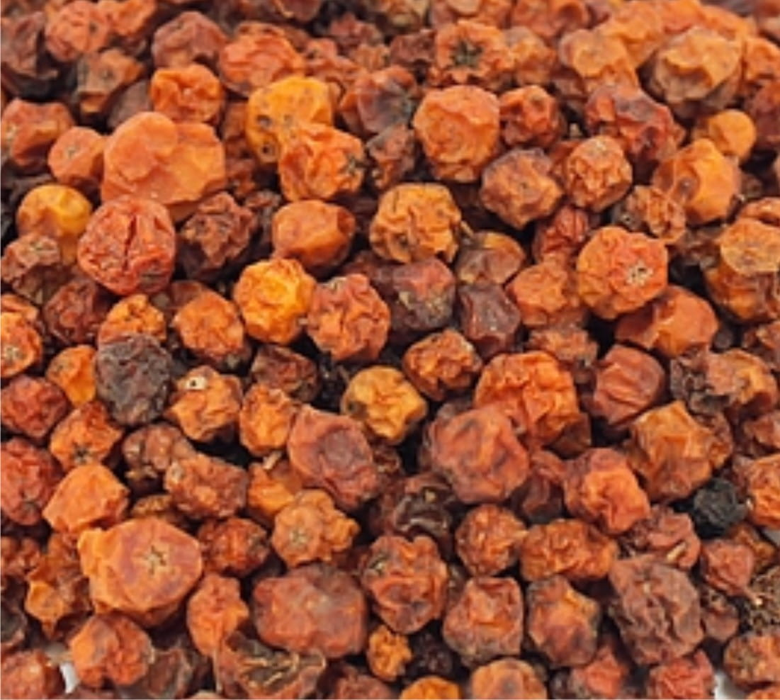 Rowan (mountain-ash) - fruit - 1000g (1kg)